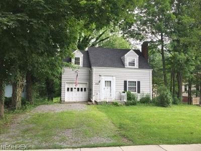 Canfield Single Family Home For Sale: 146 East Main St