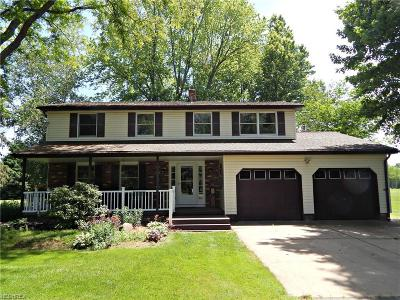 Newton Falls Single Family Home For Sale: 3933 State Route 82