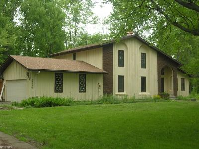 Elyria Single Family Home For Sale: 44550 Stang Rd