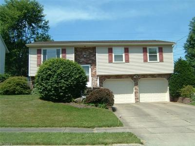 Youngstown Single Family Home For Sale: 1852 Chapel Hill Dr