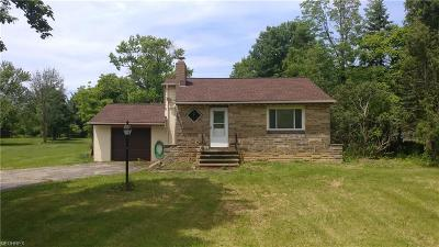 Brecksville Single Family Home For Sale: 2701 Oakes Rd
