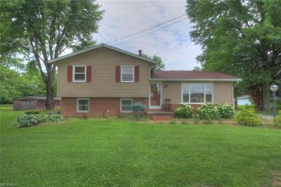 Single Family Home For Sale: 16744 State Route 62