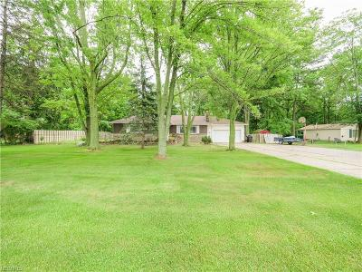 Elyria Single Family Home For Sale: 1121 West River Rd North