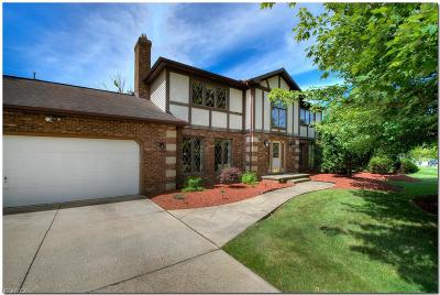 Solon Single Family Home For Sale: 36572 Derby Downs