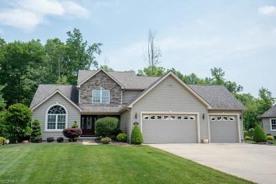 Youngstown Single Family Home For Sale: 1399 Victory Hill Ln