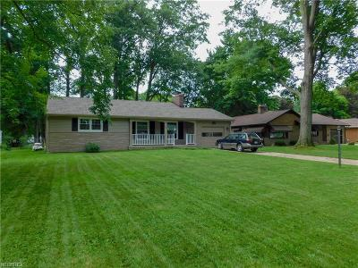 Youngstown Single Family Home For Sale: 16 Gillian Ln
