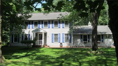 Geauga County Single Family Home For Sale: 19100 Elizabeth Ln