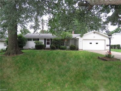 Youngstown Single Family Home For Sale: 523 Murray Hill Dr