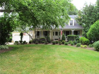 Elyria Single Family Home For Sale: 10547 Indian Hollow Rd