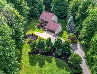 Concord Single Family Home For Sale: 6704 Ravenna Rd