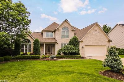 Strongsville Single Family Home For Sale: 11732 Fox Grove