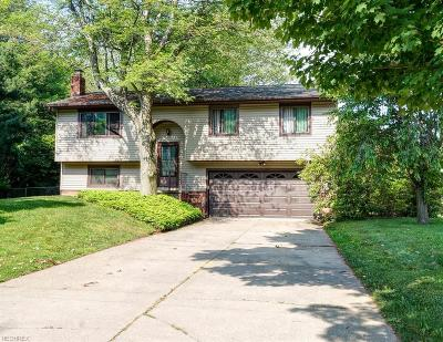 Madison Single Family Home For Sale: 1248 Erieview Dr