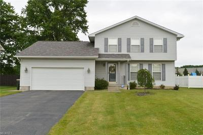 Mineral Ridge Single Family Home For Sale: 1177 Mulberry Run