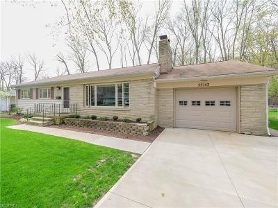 Avon Lake Single Family Home For Sale: 33143 Redwood Blvd