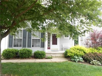 Twinsburg Single Family Home For Sale: 1384 Timber Trail