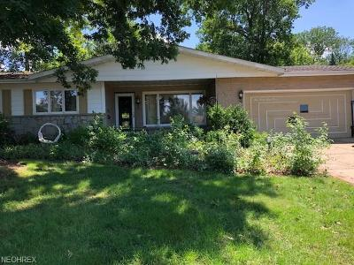 Wickliffe Single Family Home For Sale: 28840 Serenity Ln