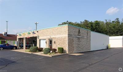 Muskingum County Commercial For Sale: 3066 Maple Ave