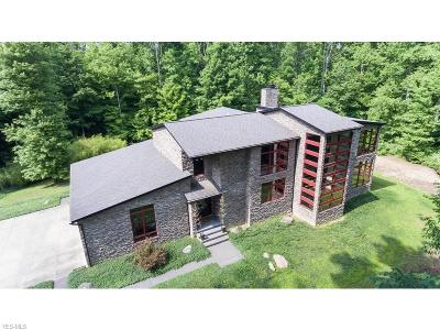 Summit County Single Family Home For Sale: 1242 Sellman Dr