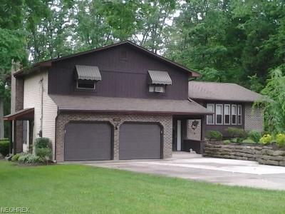 Canfield Single Family Home For Sale: 3008 Whispering Pines Dr