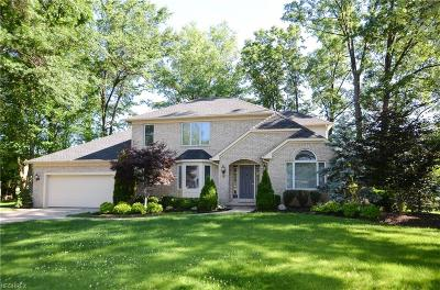 Avon Lake Single Family Home For Sale: 32336 Gable Ln