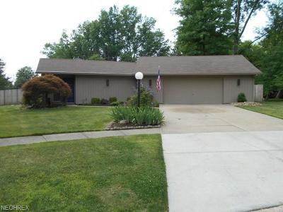 Strongsville Single Family Home For Sale: 10096 Shale Brook Ct