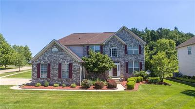 Summit County Single Family Home For Sale: 267 Seiberling Dr