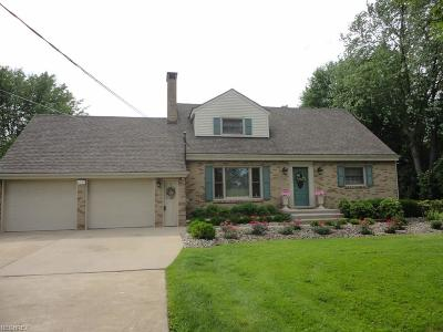 Warren Single Family Home For Sale: 6729 Mahoning Ave Northwest