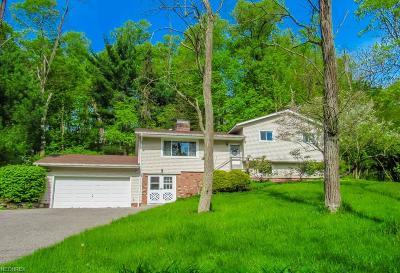 Novelty Single Family Home For Sale: 14830 Watt Rd