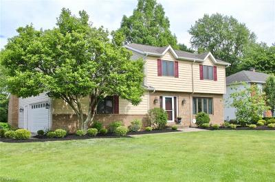 Brecksville, Broadview Heights Single Family Home For Sale: 9891 Spearhead Dr