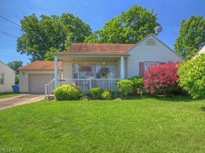 Struthers Single Family Home For Sale: 186 Renee Dr