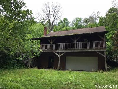 Blue Rock OH Single Family Home For Sale: $89,900