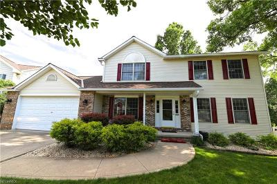 Strongsville Single Family Home For Sale: 13909 Basswood Cir