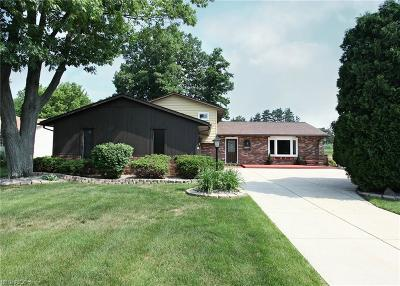 Medina County Single Family Home For Sale: 3879 Canterbury Dr