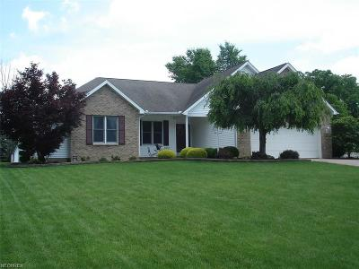 Youngstown Single Family Home For Sale: 6924 Ruby Courts