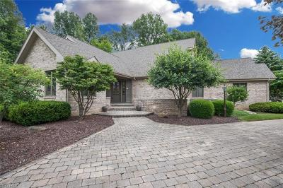 Warren Single Family Home For Sale: 9425 Bay Hill Dr Northeast