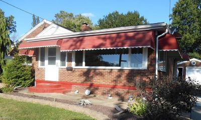Youngstown Single Family Home For Sale: 527 Mehlo Ln