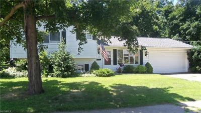 Painesville Single Family Home For Sale: 13 Orchard Grove
