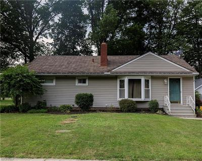 Elyria Single Family Home For Sale: 42270 Adelbert St