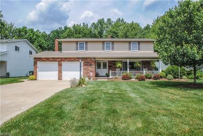 North Olmsted Single Family Home For Sale: 27424 Edgepark Dr
