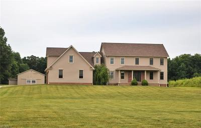 Ravenna Single Family Home For Sale: 4840 Industry Rd