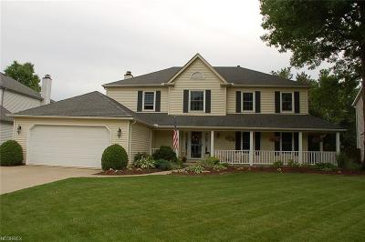 Strongsville Single Family Home For Sale: 20393 Beechwood Ln