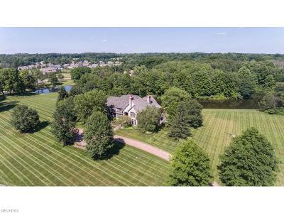 Medina Single Family Home For Sale: 6233 Brynwood Dr