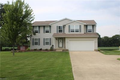 Medina County Single Family Home For Sale: 13233 Bursley Rd