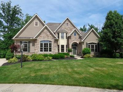 Strongsville Single Family Home For Sale: 14290 Calderdale Ln