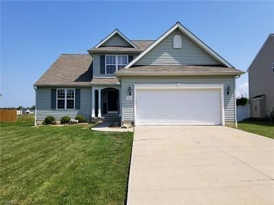 Lorain Single Family Home For Sale: 3884 Martins Run Dr