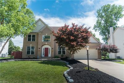 Strongsville OH Single Family Home For Sale: $389,900