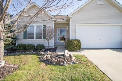 North Ridgeville Single Family Home For Sale: 8509 Antlers Trl