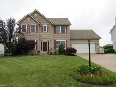 Olmsted Falls Single Family Home For Sale: 27336 Watkin Rd
