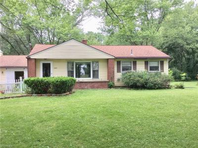 Leavittsburg Single Family Home For Sale: 1070 South Leavitt Rd