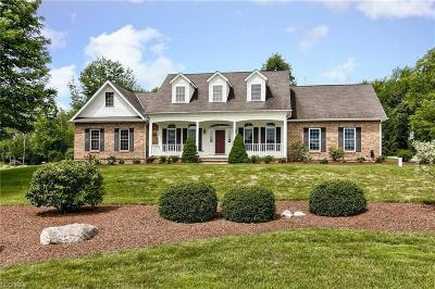 Geauga County Single Family Home For Sale: 10150 Locust Grove Dr